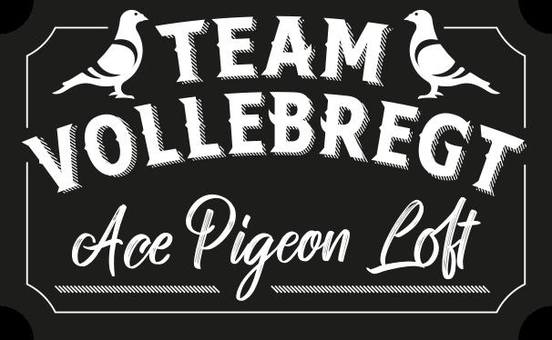 Team Vollebregt Logo